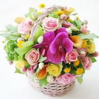 [FL60] Elegant Basket