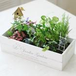 2011년 플로리스트 7월호 잡지 - Mini Garden
